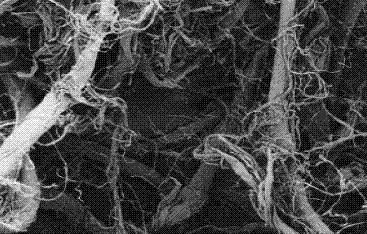 材料介绍 织物 聚丙烯晴纤维3